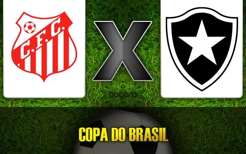 Botafogo vence Capivariano pela Copa do Brasil 2015