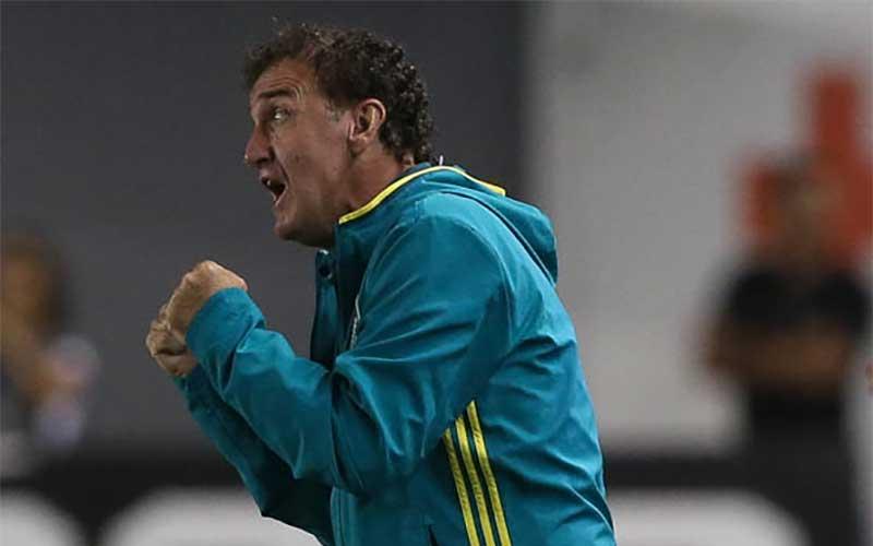 Probabilidade está com o Palmeiras no Brasileirão 2016