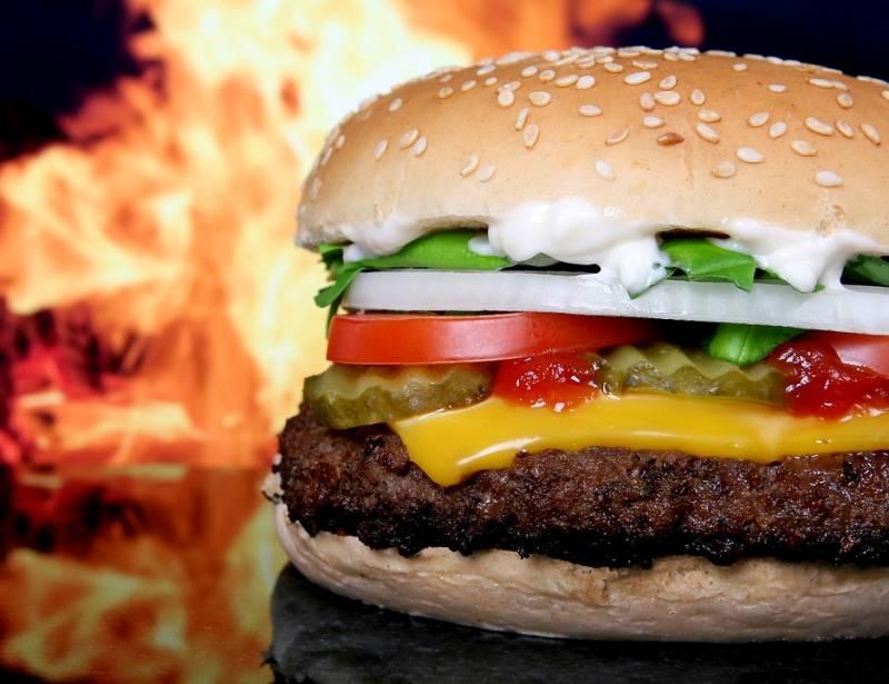 No futuro você poderá comer carne sem matar animais