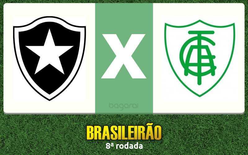 Botafogo e América-MG pelo Brasileirão 2016, Resultado do jogo
