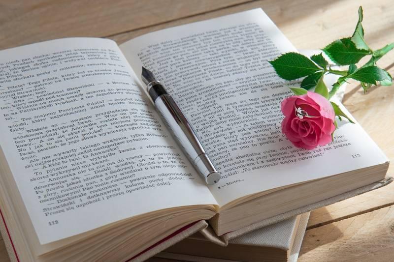 Onde baixar livros grátis de romance para ler online
